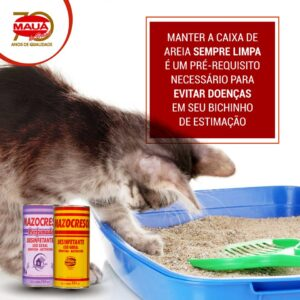 Caixa de areia do seu gato